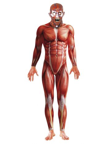 Anatomy Man Costume, Red