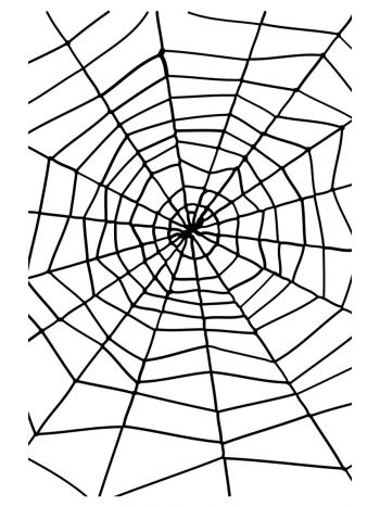 Spider & Spiders Web, Black