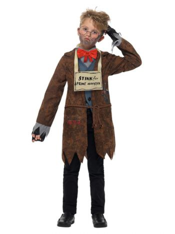 David Walliams Deluxe Mr Stink Costume, Brown