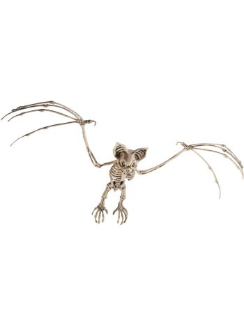 Bat Skeleton Prop, Natural